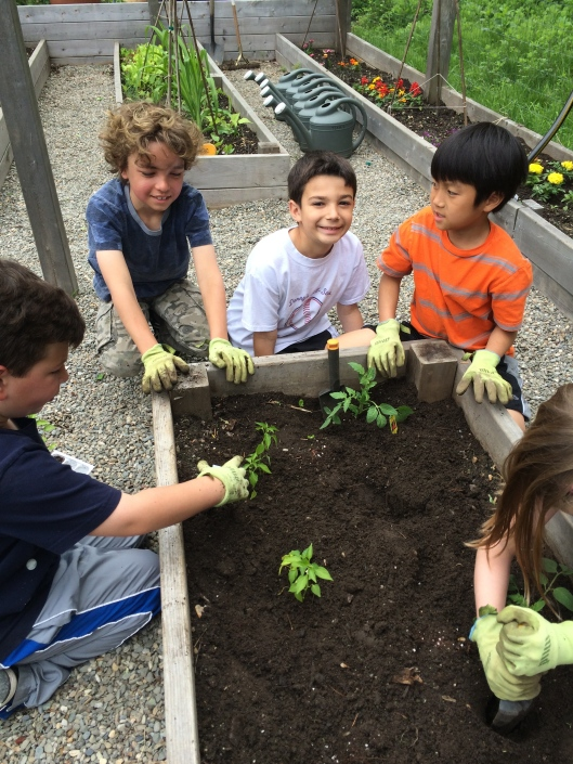 2nd graders in the garden